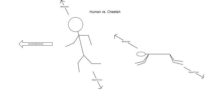 human_vs_cheetah_update